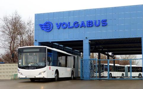Volgabus